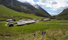 Almdorf in Südtirol