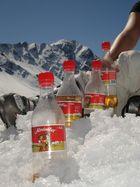 Almdudlerparade zur Abkühlung im Schnee