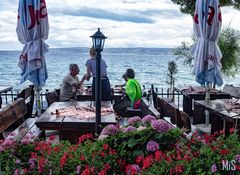 Almuerzo frente al mar
