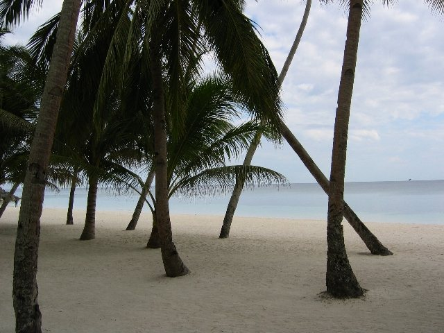 Alona Beach,Panglao