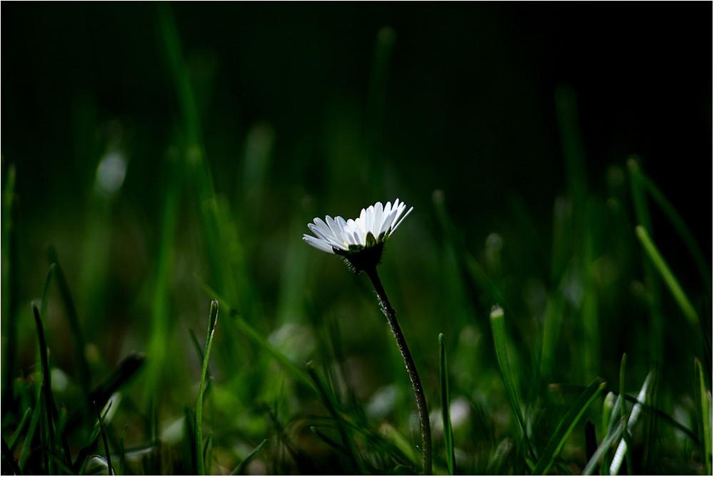 ...alone...