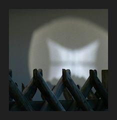 ALP (erei) EN: Reflexzone
