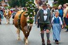 Alpabtrieb in Krün bei Mittenwald