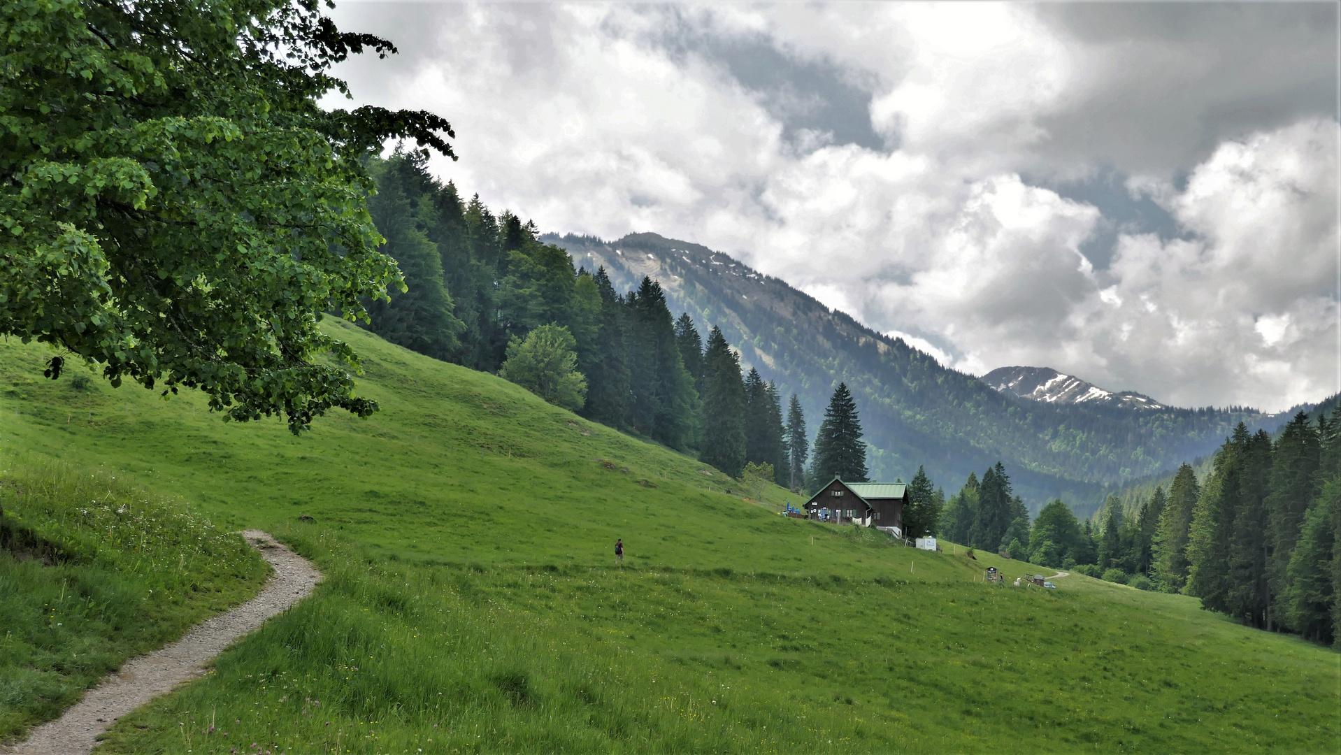 Alpe Hochried, ...