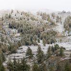 Alpeggio di Promont