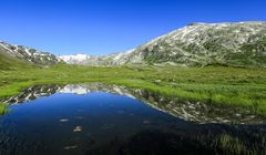 Alpen (28)