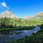 Alpen (4)