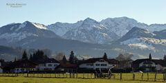 """Alpen bei Burgberg 3"""