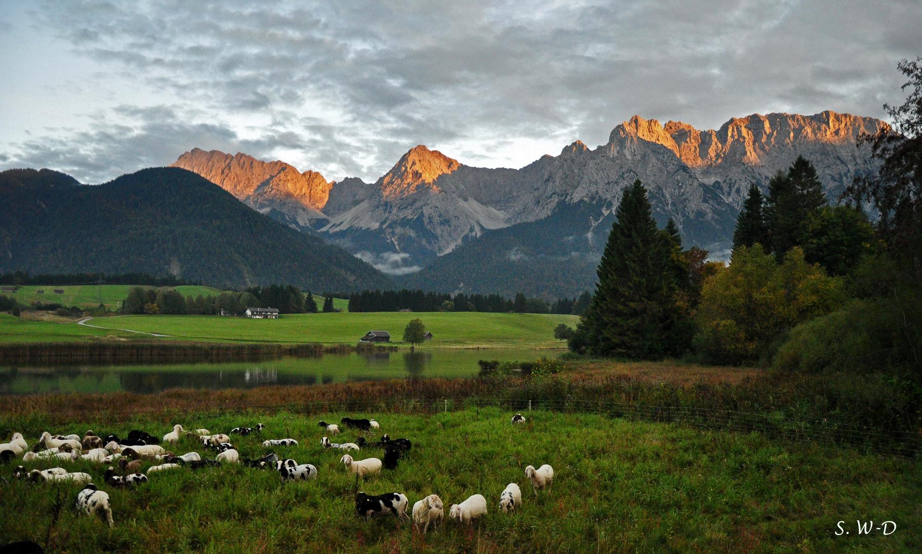 ALPENGLÜHEN im Karwendelgebirge