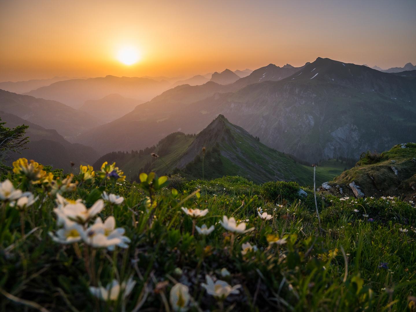 Alpenromantik 1