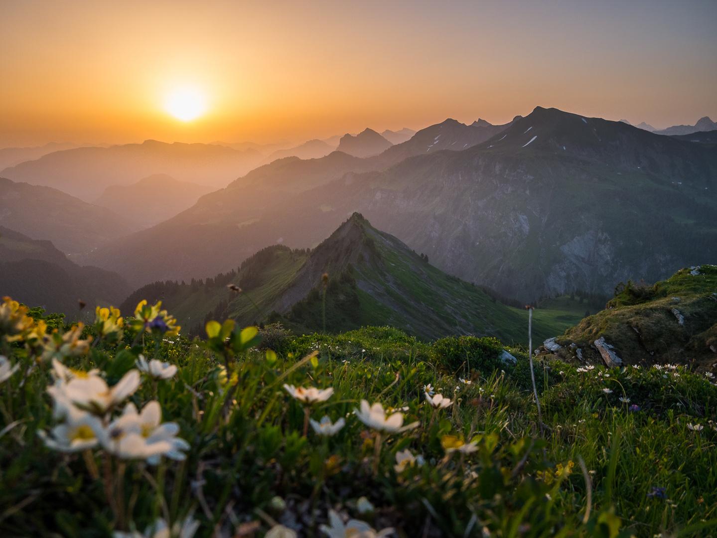 Alpenromantik 2