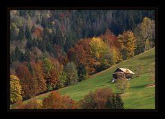 Alpherbst-Herbstalp