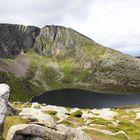 Alpines Flair am Lochnagar