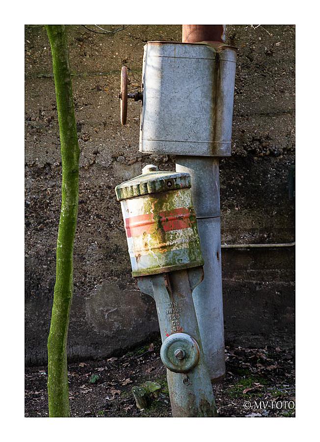 Als der Hydrant noch gerade stand, gab es den Baum noch nicht