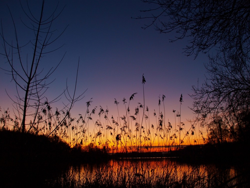 Als die Sonne hinterm Tegeler See (Berlin) versank...