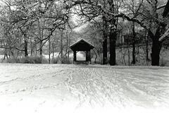 ... als es dann und wann noch Schnee gab ...