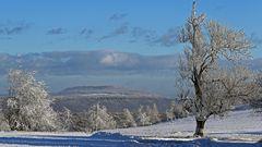 Als es in der ersten Januarwoche noch Sonne und Schnee gab....