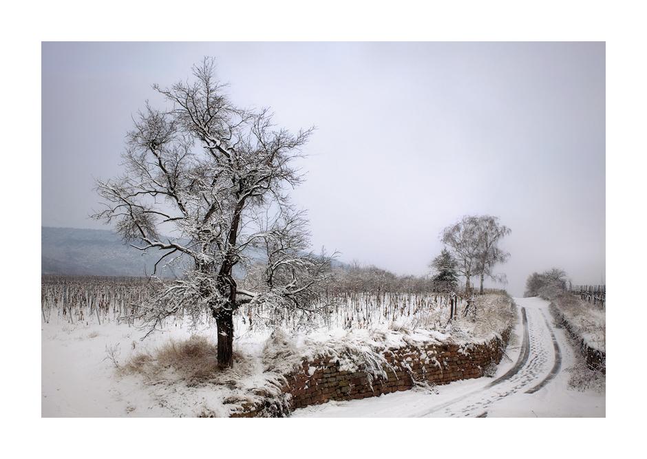 Als es noch Winter war. . .