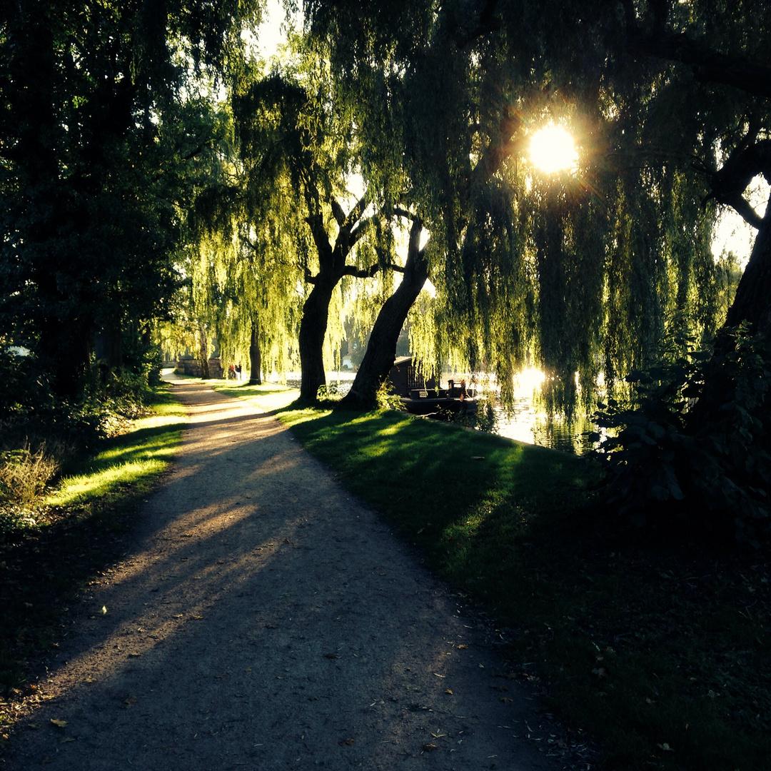 Alsterlauf im Herbst