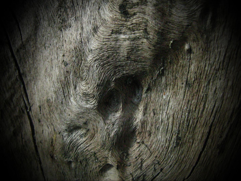 alt wie ein Baum....trotzdem was fürs Auge