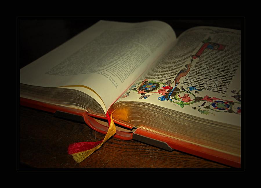 alte bibel foto bild stillleben b cher stills bilder. Black Bedroom Furniture Sets. Home Design Ideas