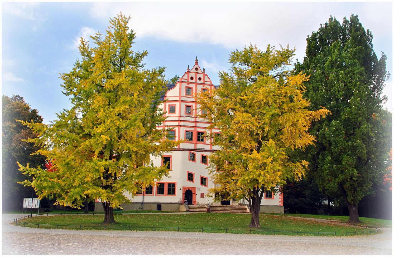 Alte Ginkobäume vor dem Renaissanceschloss Ponitz