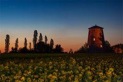 alte Holländerwindmühle am Ortsrand von Unseburg