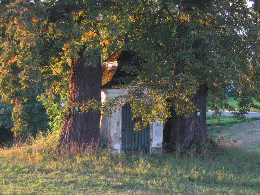 "alte Kapelle mit noch älteren ""Bodyguards"""
