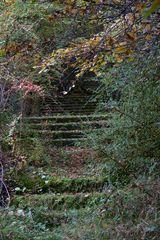 Alte Prachttreppe 2