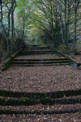 Alte Prachttreppe