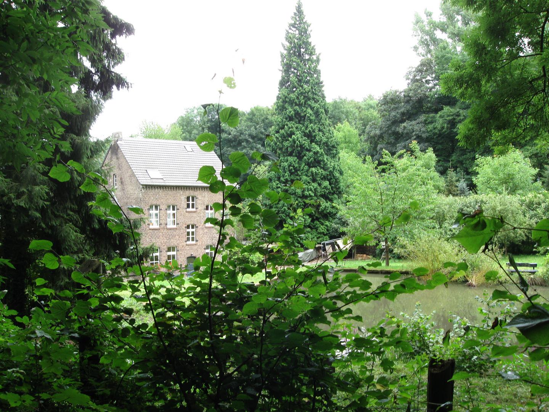 Alte Wassermühle im Wald