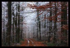 Alte  Wege....