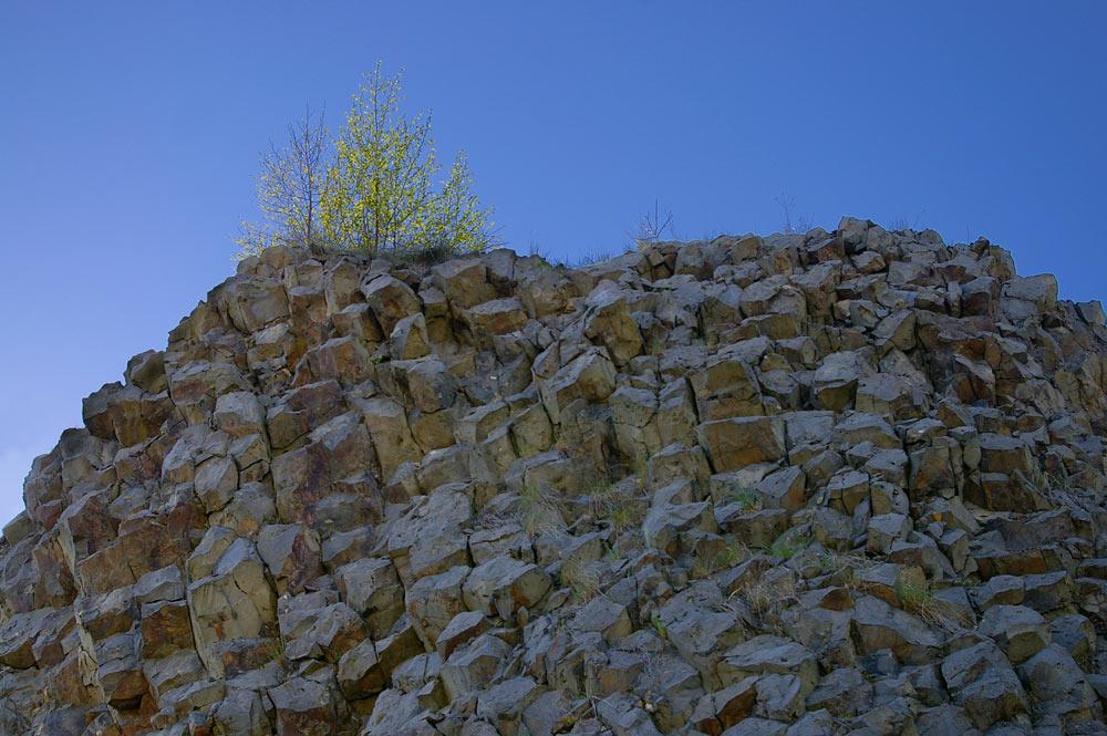 Alter Basaltsteinbruch