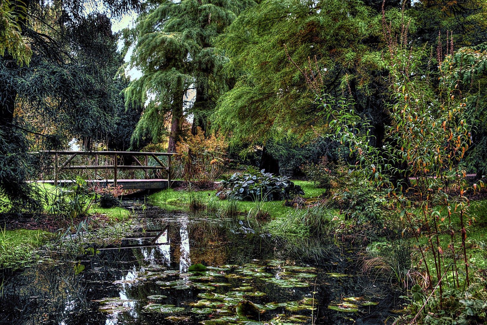 Alter Botanischer Garten Kiel: Alter Botanischer Garten In Kiel No1 Foto & Bild