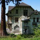 Alter Burghof mit Blick auf den Rhein