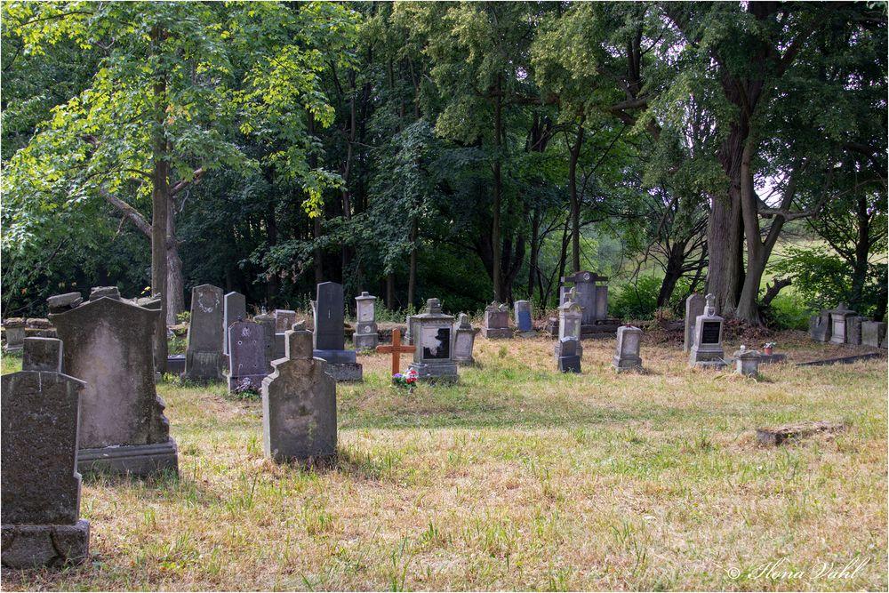 Alter Friedhof (05)