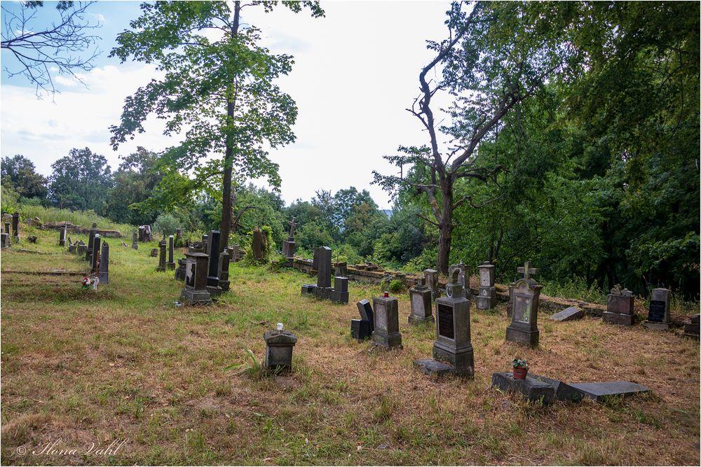 Alter Friedhof (06)