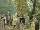 Alter Friedhof (3)