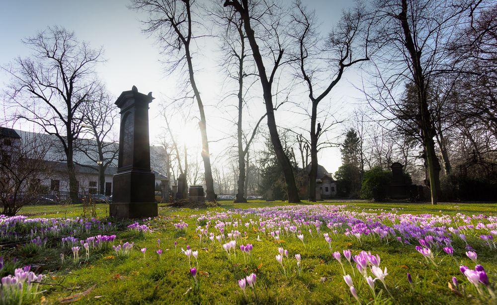 Alter Friedhof an der Kreuzstraße