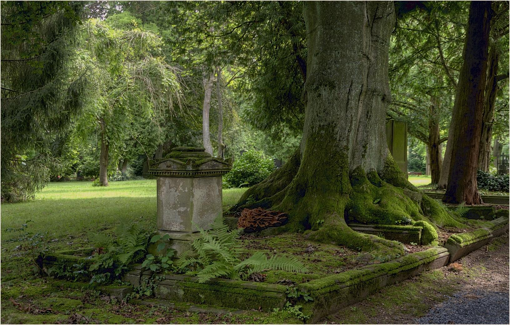 ~~Alter Friedhof in Gießen~~