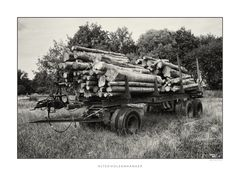 Alter Holztrailer