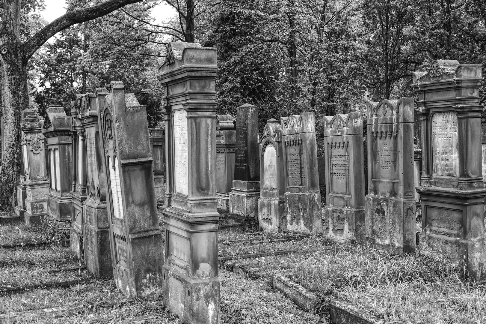 Alter Jüdischer Friedhof Offenbach am Main