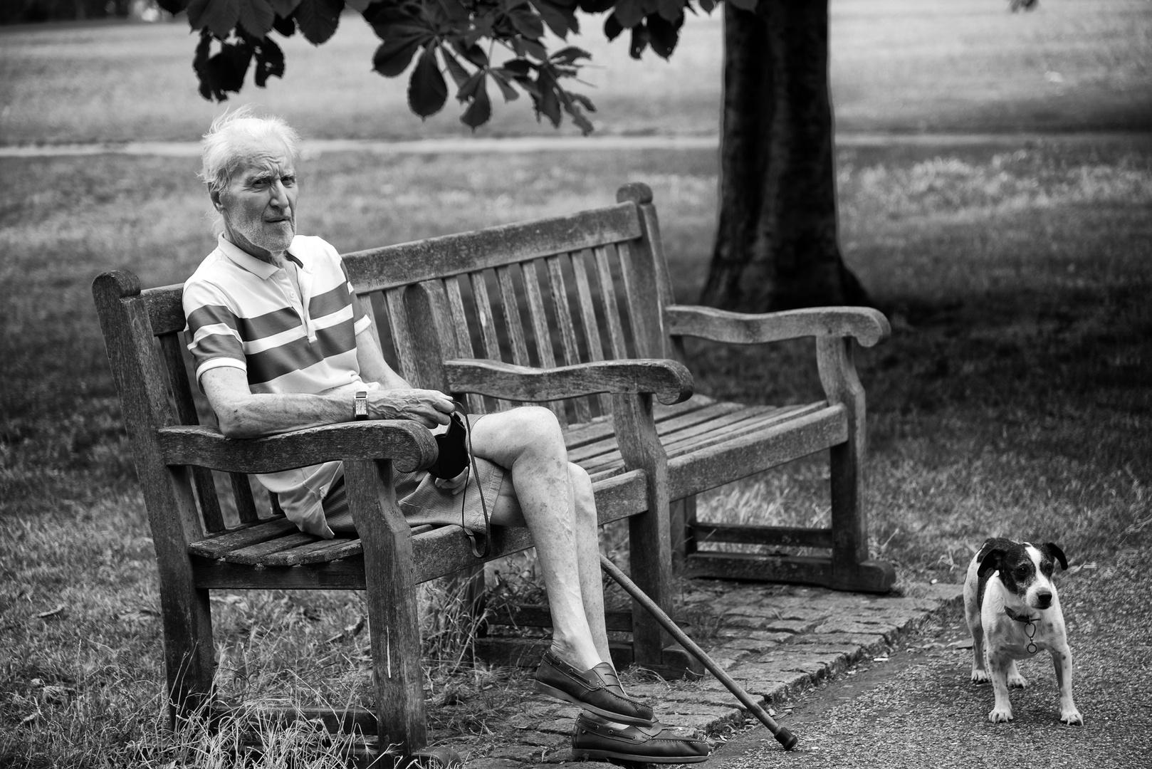 Alter Mann im Londoner Hyde Park