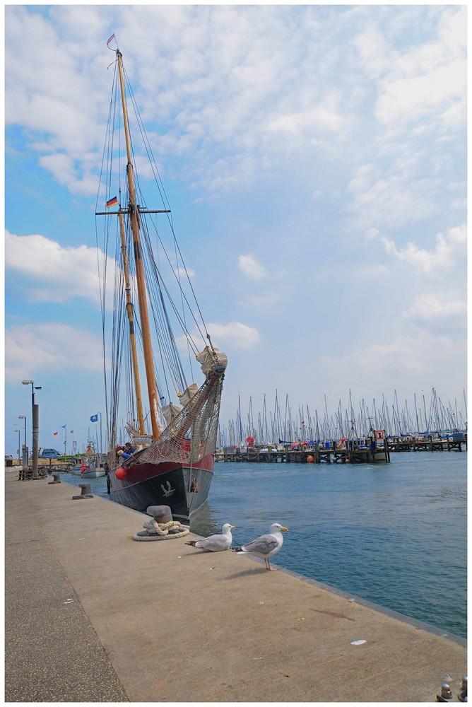 Alter Segler im Hafen von Maasholm..
