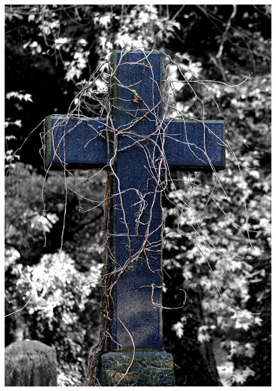 alter südfriedhof motiv 2
