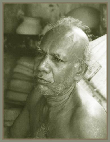 alter Tabakpflücker auf Sri Lanka