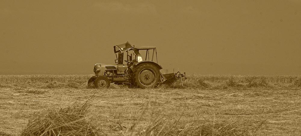 Alter Traktor beim Heurechen
