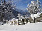 Alter Zaun mit Schnee