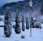 Altersheim in Bauma Park nach Schneesturm
