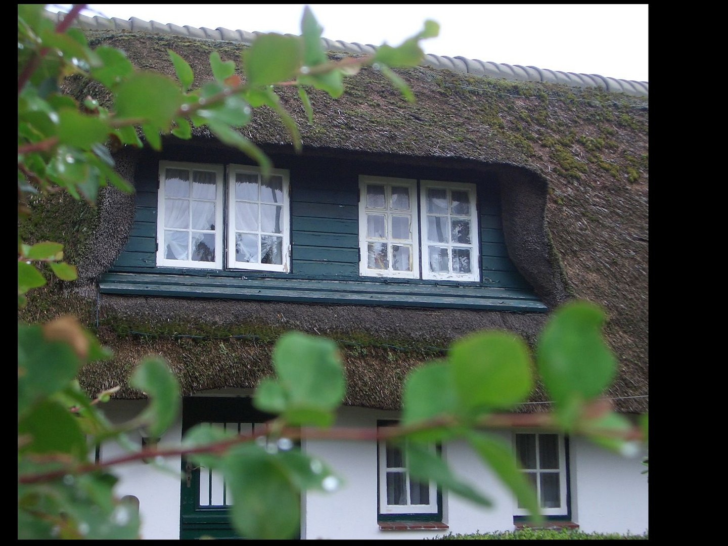 altes fenster in keitum